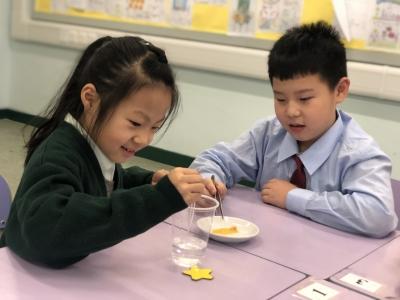 三年級常識科與超學科專題研習 — 食物色素