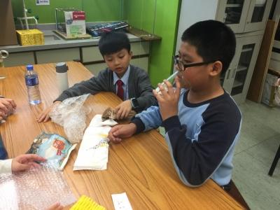 五年級常識科與超學科專題研習 — 聲音