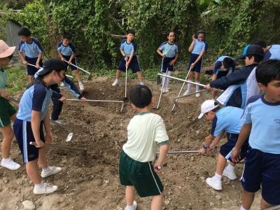 五年級常識科參觀有機農莊