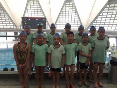 2016 - 2017 大嶼山區小學校際游泳比賽